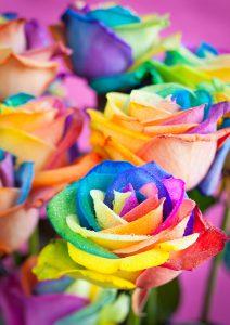 ColourfulFlowers